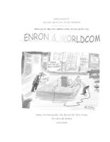 Quản trị tài chính công ty đa quốc gia-hình thành ,phát triển,sụp đổ của công ty ENRON VÀ WORLDCOM