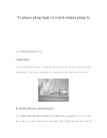 Vi phạm pháp luật và trách nhiệm pháp lý.PDF
