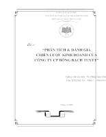 Phân tích & đánh giá chiến lược kinh doanh của công ty cp bông bạch tuyết