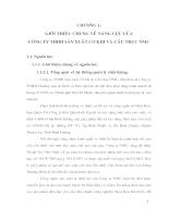 Thiết kế cầu trục một dầm Q=5T L=16,5m - Chương 1