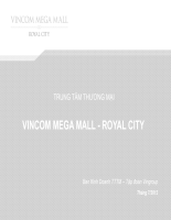 VMM Royal City - Presentation VIE 20.07.2012