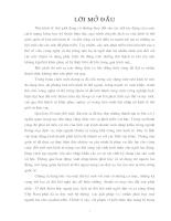 Một số biện pháp đẩy mạnh XK của Cty Cổ phần XNK Nam Hà Nội