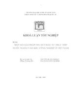 Một số giải pháp thu hút đầu tư trực tiếp nước ngoài vào KCN ở Việt Nam