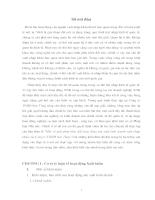 Một số giải pháp thúc đẩy hoạt động SXKD XNK của Cty TNHH Sơn Tựng