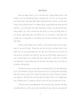 HÃY PHÂN TÍCH NHỮNG NÉT ĐẸP RIÊNG CỦA THÁP CHÀM TRONG SO SÁNH VỚI NHỮNG KiẾN TRÚC CỔ ĐÔNG NAM Á