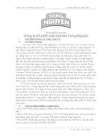 Tìm hiểu thực trạng và xây dựng chiến lược Marketing Mix cho sản phẩm phân bón Urê của công ty TNHH Hòa Phát tại thị trường An Giang