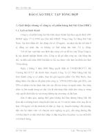 Giới thiệu chung về công ty cổ phần hàng hải Sài Gòn (SHC)