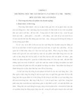định hướng & Giải pháp phát triển thị trường TTSP của Cty Cao su Sao Vàng