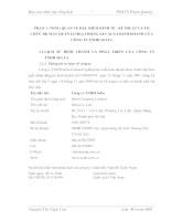 Báo cáo  tổng hợp Công ty TNHH SELTA