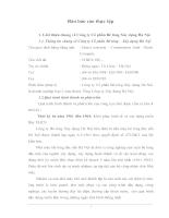 Báo cáo thực tập về công ty Cổ phần Bê tông Xây dựng Hà Nội