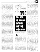 Những tác động cùa APEC đối với hệ thống sở hữu trí tuệ Việt Nam.pdf
