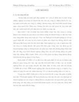 Chuyên đề tốt nghiệp tại ty CK Mê Kông.