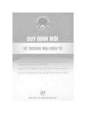 Quy định mới về thương mại điện tử.pdf
