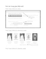Test các trang giao diện mới 21.12.2012