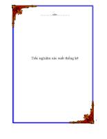 trac-nghiem-xac-suat-thong-ke.pdf