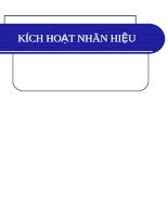 kich-hoat-nhan-hieu.pdf