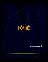 Hon me.pdf