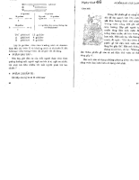 Phương pháp rèn luyện trí não Omizumi Kagayaki .q3.2