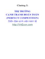 thi-truong-canh-tranh-hoan-toan.pdf