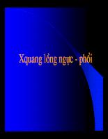 XQuang long nguc va phoi.pdf
