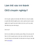 Làm thế nào trở thành CEO chuyên nghiệp ?