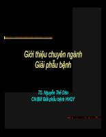 GPB dai cuong QY.pdf