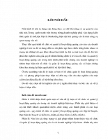 NÊU LÊN CÁC THỰC TRẠNG VÀ GIẢI PHÁP NHẰM HOÀN THIỆN VIỆC TỔ CHỨC VÀ QUẢN LÝ HOẠT DỘNG QUẢNG CÁO Ở CÁC DOANH NGHIỆP VIỆT NAM.doc.DOC