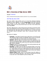 Overview of SQL Server 2000