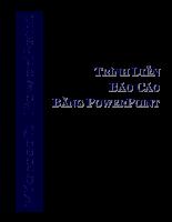 Trình diễn báo cáo bằng Power Point
