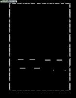 Cơ học kết cấu tập 1 chương 2.pdf
