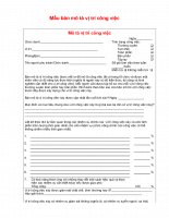 Mẫu bản mô tả vị trí công việc