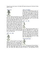 the-cay-canh.pdf