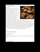 công nghệ thực phẩm sản xuất bánh quy