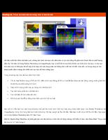 Tối ưu hoá hình ảnh cho trang Web và Bản đồ ảnh