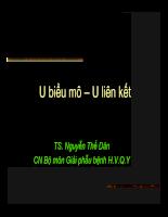 GPB - U bieu mo - lien ket Qy.pdf