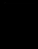 GIẢI PHÁP NÂNG CAO CHẤT LƯỢNG HOẠT ĐỘNG TƯ VẤN CỔ PHẦN HÓA DOANH NGHIỆP NHÀ NƯỚC CỦA CÔNG TY CHỨNG KHOÁN THĂNG LONG.doc