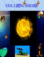 NĂNG LƯỢNG SINH HỌC (Lipid Metabolism (TRAO ĐỔI LIPID)