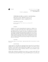 Chromium speciation in municipal solid waste: Effects of clay amendment and composting