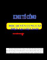 tiểu luận độc quyền cung cấp điện tại Việt Nam.doc