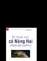 Tài liệu Kỹ thuật nuôi cá Nàng Hai (thát lát còm) - phan 1.pdf