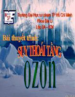 suy thoai tang ozon.ppt