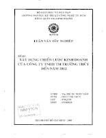 Xây dựng chiến lược kinh doanh của công ty TNHH thương mại Trường Thủy đến năm 2012.pdf
