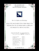 Báo cáo nghiên cứu marketing sản phẩm cà phê lon công ty Trung Nguyên.doc