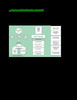 Tổng hợp về hệ thống kiểm soát nội bộ.docx
