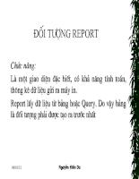 Bài giảng đối tượng Report