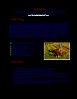 Chuong 6.pdf