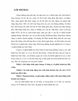 Các mặt hoạt động sản xuất kinh doanh chủ yếu của CTCP bánh kẹo Hải Châu.DOC