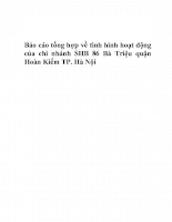 Báo cáo tổng hợp về tình hình hoạt động của chi nhánh SHB 86 Bà Triệu quận Hoàn Kiếm TP. Hà Nội.DOC