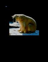 Thế giới động vật: máu nóng và máu lạnh