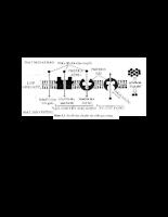 Sinh học đại cương c5.pdf